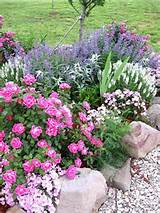 Pin by Katy Chronister on Gardening | Pinterest