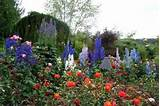 Rose Garden: Small Space Rose Garden Small,Small Space Rose Garden ...