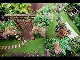 Creating A Beautiful Tropical Home Garden | Beautiful Homes Design