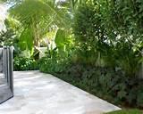 Tropical Formal Fountain Home Design, Photos & Decor Ideas