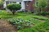 Backyard Vegetable Garden Design Ideas - Simple Home Designs