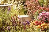 High Desert Gardening Landscaping Services, Garden Centers and ...