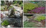 Landscaping with rocks, water features, and flowering ground covers is ...