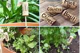 creative garden label ideas so creative things creative diy