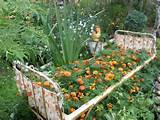Recycling old bed for unusual flower bed