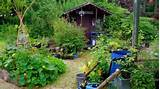 Cottage garden; Cottage garden ideas; craft cottage; garden ideas ...