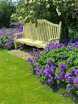 flowers garden bench more flowers yellow garden ideas garden benches ...