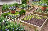 ... Raised vegetable garden design, Raised vegetable garden, and published