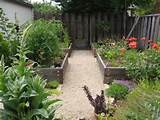 vegetable garden ideas | Home Designs Wallpapers