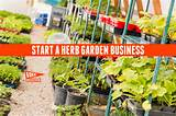 start a herb garden business entrepreneur business idea