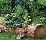 how to make beautiful log garden planter icreativeideas com like us