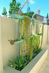 Contemporary Garden and Vertical Garden Feature contemporary-landscape