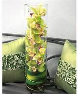 ... Ideas, Flower Arrangements, Orchid Arrangements, Cymbidium Orchids