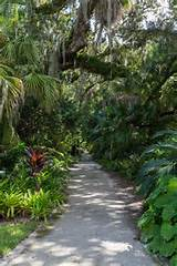 Historic McKee garden in Vero offers $1 admission Oct. 4 | www ...