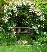 Garden ideas, arbor ideas, pergola ideas, bench ideas, climbing rose ...