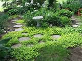 Hidden Garden | Secret Garden Stepping Stones - Backyard Garden Design ...
