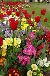 spring flower garden ideas garden ideas pinterest