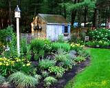 Backyard Backyard Design Ideas, Remodels & Photos with Mulch