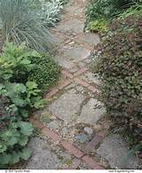 bricks and broken concrete for path where the green grass grows