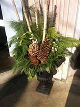 Winter planter | Garden ideas | Pinterest
