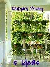 landscaping ideas to increase backyard privacy landscaping privacy