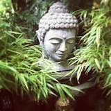 buddha in bamboo garden zen buddha garden ideas pinterest