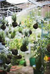 String Garden Decorations, Vertical Gardens and Backyard Ideas