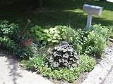 shady mailbox garden photo flickr user solomons3