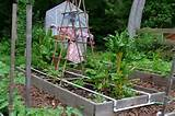 irrigation for raised beds garden pinterest