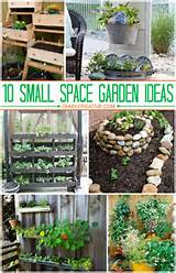 10 Small Space Garden Ideas And Inspiration - The Girl Creative