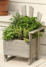 Creative Herb Garden Ideas For Every Home | Susa Guhl Partners ...