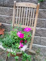 ... feature garden planter. | The Micro Gardener www.themicrogardener.com