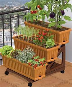 patio vegetable garden ideas image 2014 Patio vegetable garden