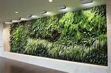 ... Garden Lights: Ideas To Decorate Interior With Indoor Vertical Garden