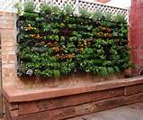 container gardening vertical vegetable gardening containers ideas