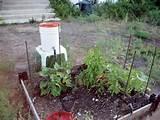 irrigatie van de tuin met waterduk door hoogteverschil hier wordt