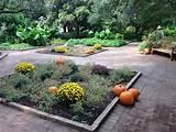 fall garden ideas garden dreams pinterest