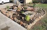 Cactus Rock Garden | Katy LandscapingKaty Landscaping