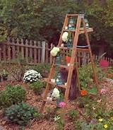 old-wooden-ladder-garden-decorating-ideas