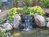backyard ponds and streams | ... Landscapes - Northern Illinois Ponds ...