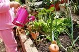 Nursery School Garden Ideas - Modern Architecture Decorating Ideas ...