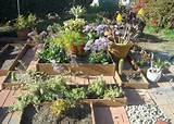 cool garden! | gardening in a bugs life | Pinterest