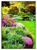 easy flower garden ideas and plans southern sprouts landscaping