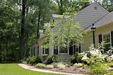 Warren deer resistant garden traditional-landscape