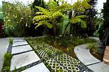 Tropical Landscaping - Calimesa, CA - Photo Gallery - Landscaping ...