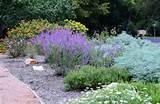 fall gardening ideas | A New Garden | Pinterest
