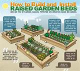 how to build raised vegetable garden home design ideas