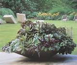 Shallow mounded planter. | Garden layout ideas | Pinterest