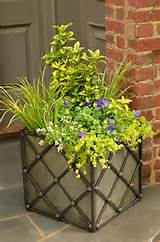 ... Ideas for Fall Container Gardening | Fall Garden Ideas | Pinterest