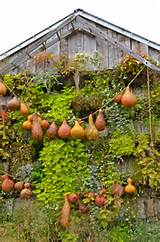 Impressive Autumn Garden Decor Ideas - Top Dreamer